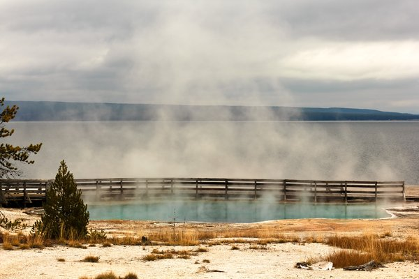 Steamy Spring: Spring steaming at Yellowstone, home of Old faithful.