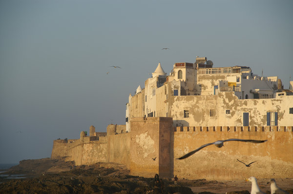 Essaouira-1: marokko, Essaouira, city, city wall, evening light