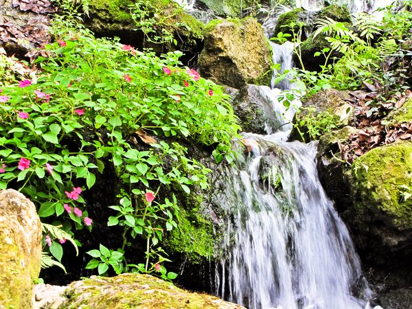 Floral Spring Falls: Water falling through bouquets of flowers