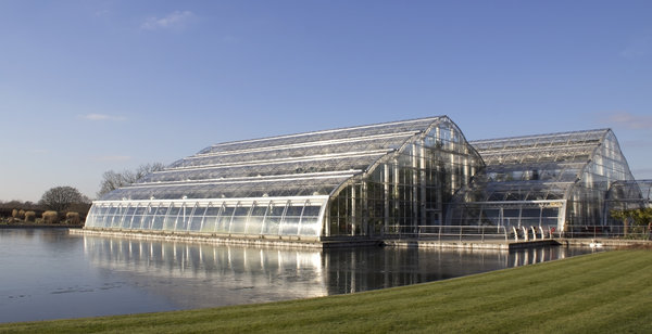 English greenhouse: A large greenhouse in Surrey, England.