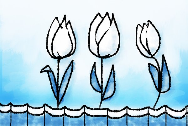 three tulips: Three Dutch tulips illustration