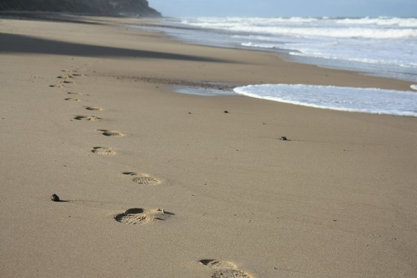 Footprints in the sand: Footprints in the sand