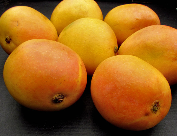 mango colour2: colourful golden ripe fresh mangoes