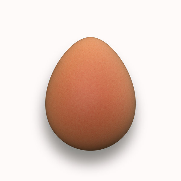Egg: One fresh egg in a pristine brown shell. You may prefer a white egg:  http://www.rgbstock.com/photo/nJa1SQE/Egg+2