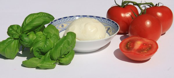 Italian food II: Basil, mozzarella and tomato in the colors of Italy