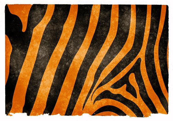 Tiger Stripes Grunge Paper: Grunge textured tiger stripes on vintage paper.