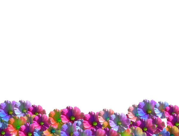 Flower Wave: A wave or border of colourful spring flowers. Great for notes, cards, gardening sites, spring or summer images, frames, etc.