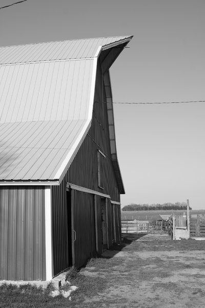 Barn: black and white barn