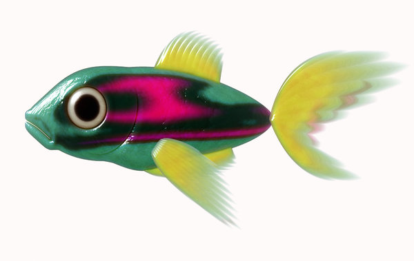 A Little Fish 3: A cute little 3d fish in black, pink, green and yellow against a white background.
