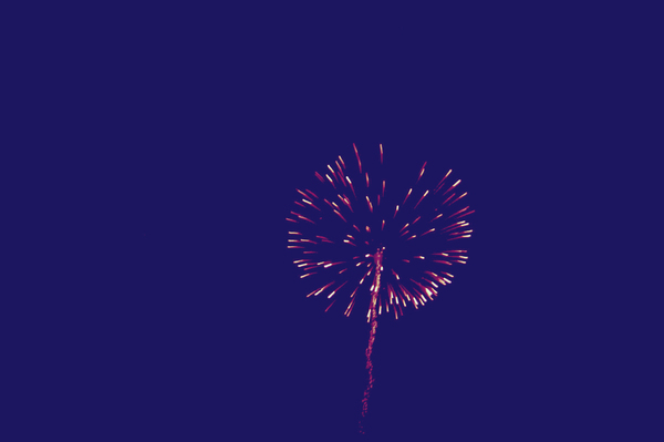 Fireworks: Bright pink fireworks against a dark blue sky.
