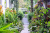 Carolina Garden Path