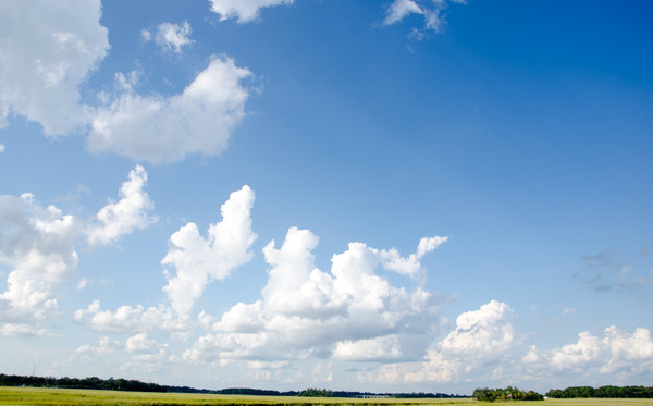 Clouds over fields: Late summer clouds over green fields. Photo taken mid afternoon in North Carolina, USA