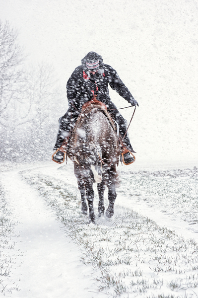 Ride in Snow Storm: Woman riding a Quarter Horse in heavy Snow Storm, that´s how Santa Claus must feel...