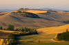Tuscany View
