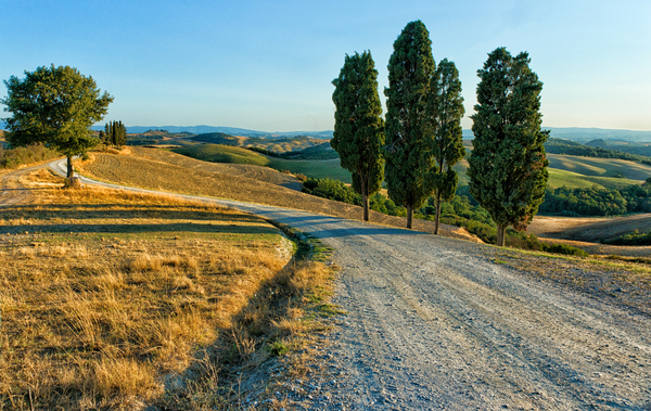 Country Road - Tuscany: Country Road through the rolling Hills of Crete Senesi - Tuscany