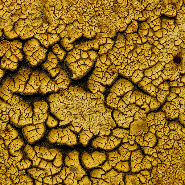 Dry earth texture: no description