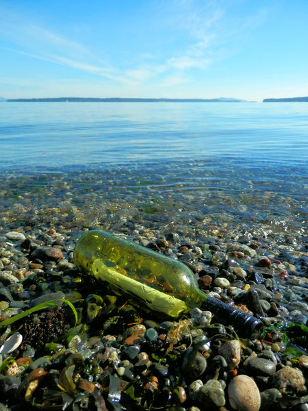message in a bottle: no description