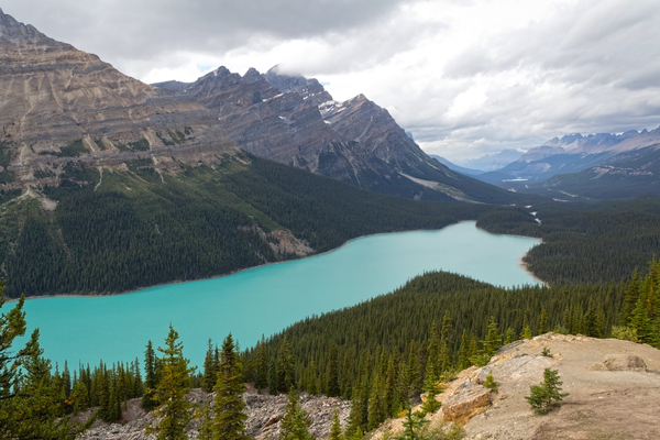 Mountain lake: A lake in the Rocky Mountains, Canada. The extraordinary colour of the water is due to suspended silt.