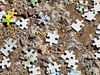 puzzling2