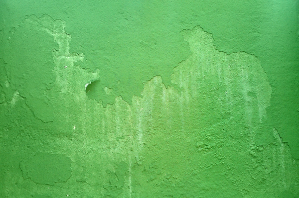 Grunge Wall Textures (Green): A concrete wall painted long time ago...