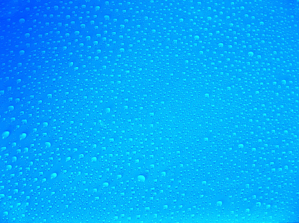 drops: drops on the glass