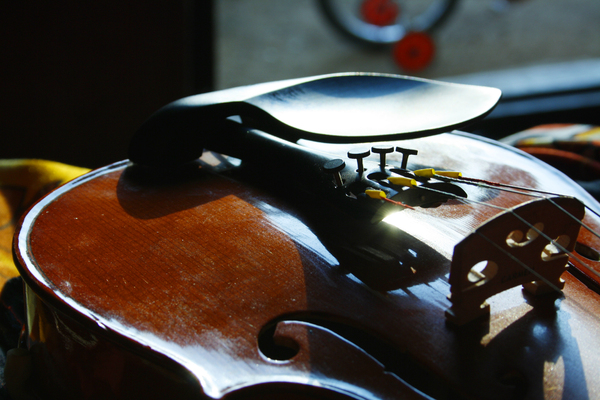 Violin: Musical Instument