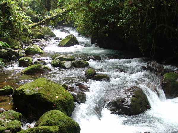 Fresh river: A river in Cataratas de la Paz, Costa Rica
