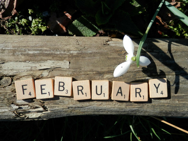 February: no description