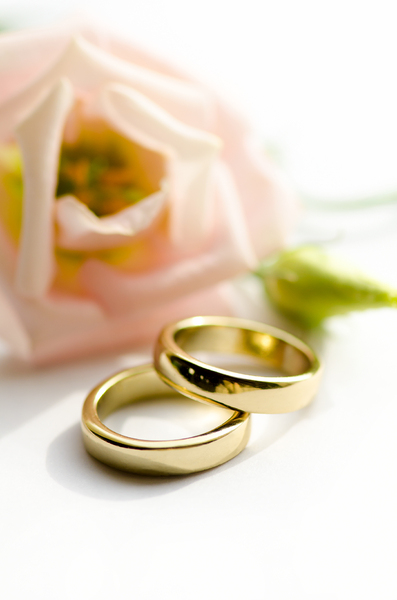 Golden wedding rings: Two wedding rings on a white background with soft pink flower