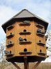 wooden dove house