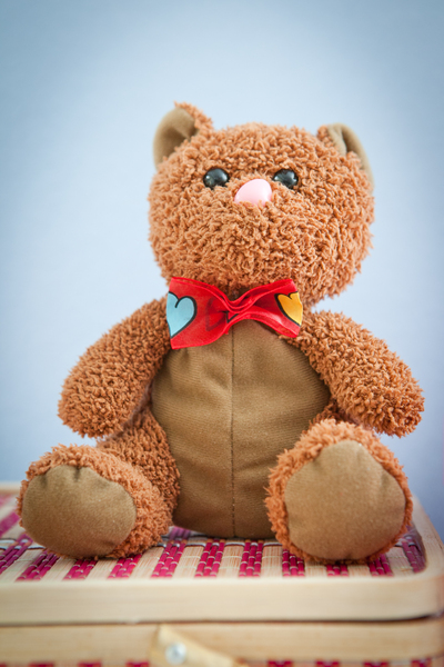 Teddy Bear 1: Photo of cute teddy bear