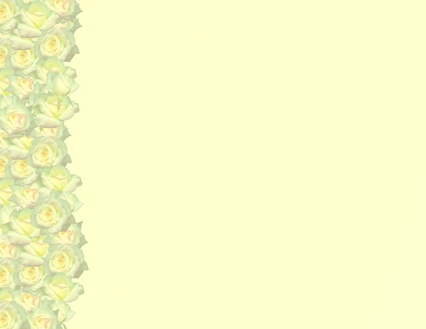 Simple Rose Border 5: A simple border of roses with plenty of copyspace. Photo and graphic. You may prefer this:  http://www.rgbstock.com/photo/2dyVNiP/Floral+Border+31  or this:  http://www.rgbstock.com/photo/2dyVYXk/White+Rose+Border+1