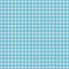 Blue Gingham 2