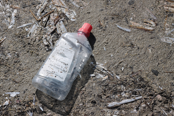 Pollution: Plastic bottle at the beach