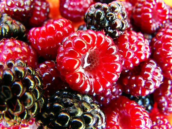 Raspberry: Fresh picked berries