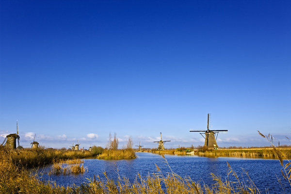 Dutch windmills: Shot in Kinderdijk, the Netherlands
