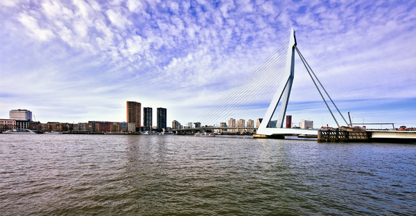 Erasmus bridge: Erasmus bridge Rotterdam