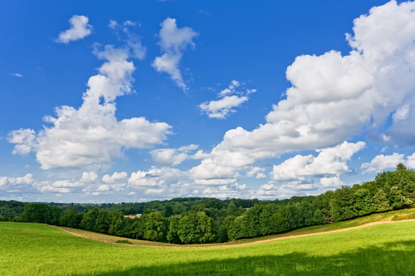 French landscape: Picture was taken during summer in the Dordogne, France