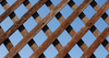Wood Lattice