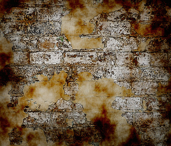 Grunge Brick Wall 3: A grungy, plastery, broken wall. Will make a great background or texture. You may prefer this:  http://www.rgbstock.com/photo/mV0QCmg/Grunge+Wall  or this:  http://www.rgbstock.com/photo/nL9jKIq/Graphic+Bricks