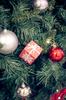 Christmas Season 2
