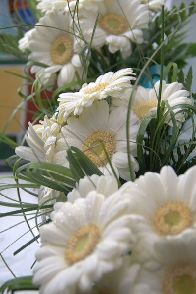 Wedding flowers: Wedding flowers await transportation