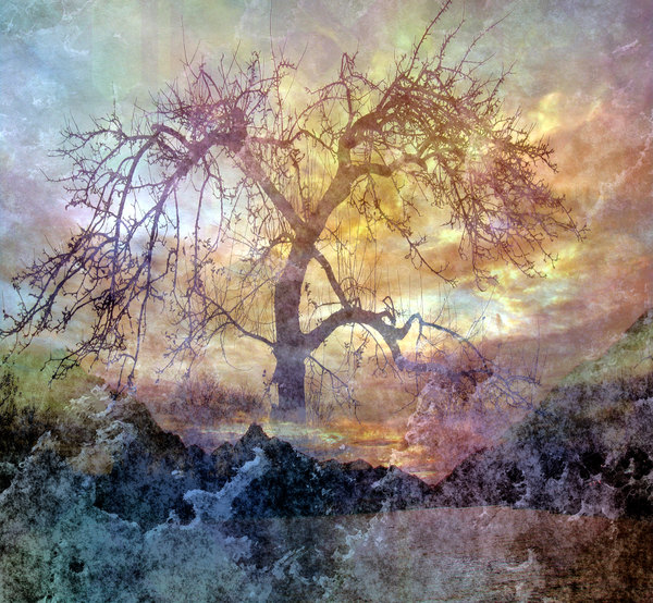 Collage Fantasy Tree 1: A fantasy collage made with a public domain image. You may prefer: http://www.rgbstock.com/photo/nPv74wI/Vivid+Fantasy+Collage+3  or:  http://www.rgbstock.com/photo/n6d0kvA/Grungy+Fantasy+Sunset