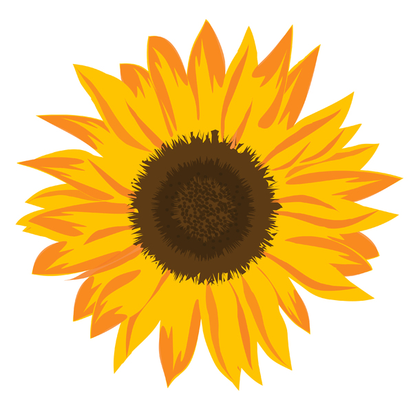 Sunflower Element: Sunflower icon/element on white background.