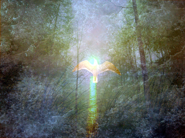 Magical Collage: A bird rises in a shaft of light in a magical collage scene.