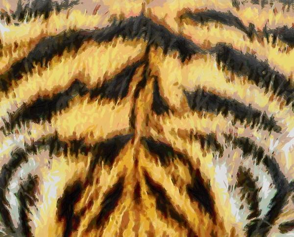 Tiger Fur: Tiger fur texture painting.: www.rgbstock.com/bigphoto/oGGAkkk/Tiger+Fur