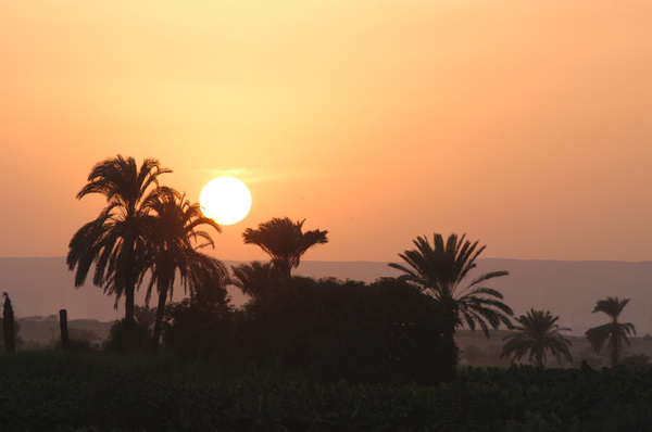 Sunset on the Nile: Sunset on the Nile
