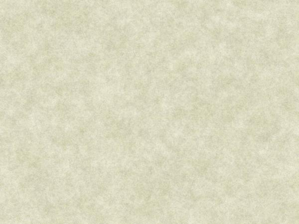 Plain Parchment 5: A sheet of plain parchment. Great texture, background, etc. You may prefer:   http://www.rgbstock.com/photo/nSydVZm/Plain+Parchment+2  or:  http://www.rgbstock.com/photo/okIsh8G/Hi-res+Parchment+8