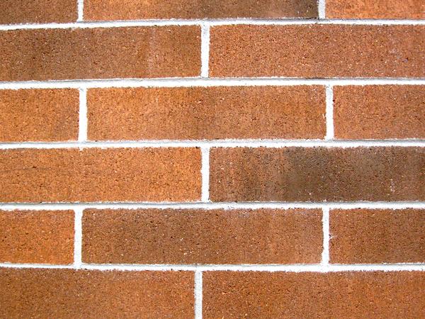 Gratis stock foto 39 s rgbstock gratis afbeeldingen rode bakstenen muur cactus1 november - Rode bakstenen lounge ...