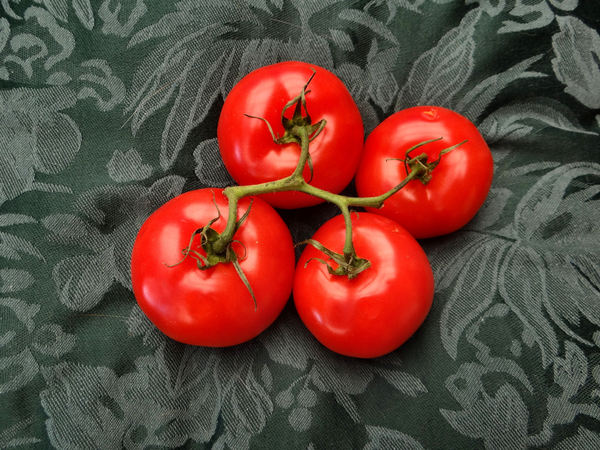 vine ripened tomatoes1b: large firm standard round tomatoes in vine cluster